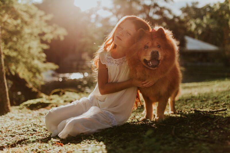 A perda de um animal de estimação ajuda as crianças a perceberem o que é a morte